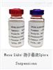 EZS/6康晨希特价供应MESALABS生物指示剂