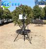 甘肃农业环境在线监测仪XC-QT-Ⅲ-7生产厂家