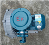 EX-G-3环保设备高压防爆鼓风机