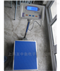 ES-300MT计重电子台秤