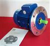 MS8024ZIK清华紫光MS电动机