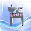 V5-6DE斗式防爆液体灌装机低价销售